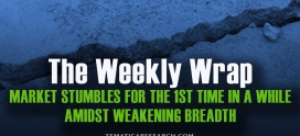 WEEKLY WRAP: The Market Stumbles for the First Time in a While