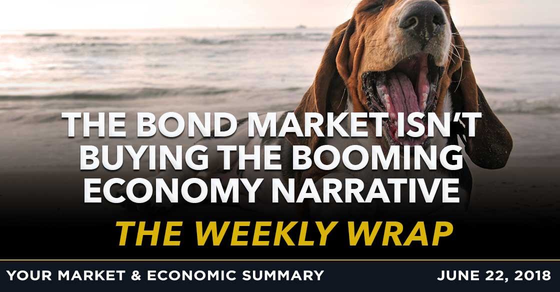 Weekly Wrap: The bond market isn't buying the booming economy narrative