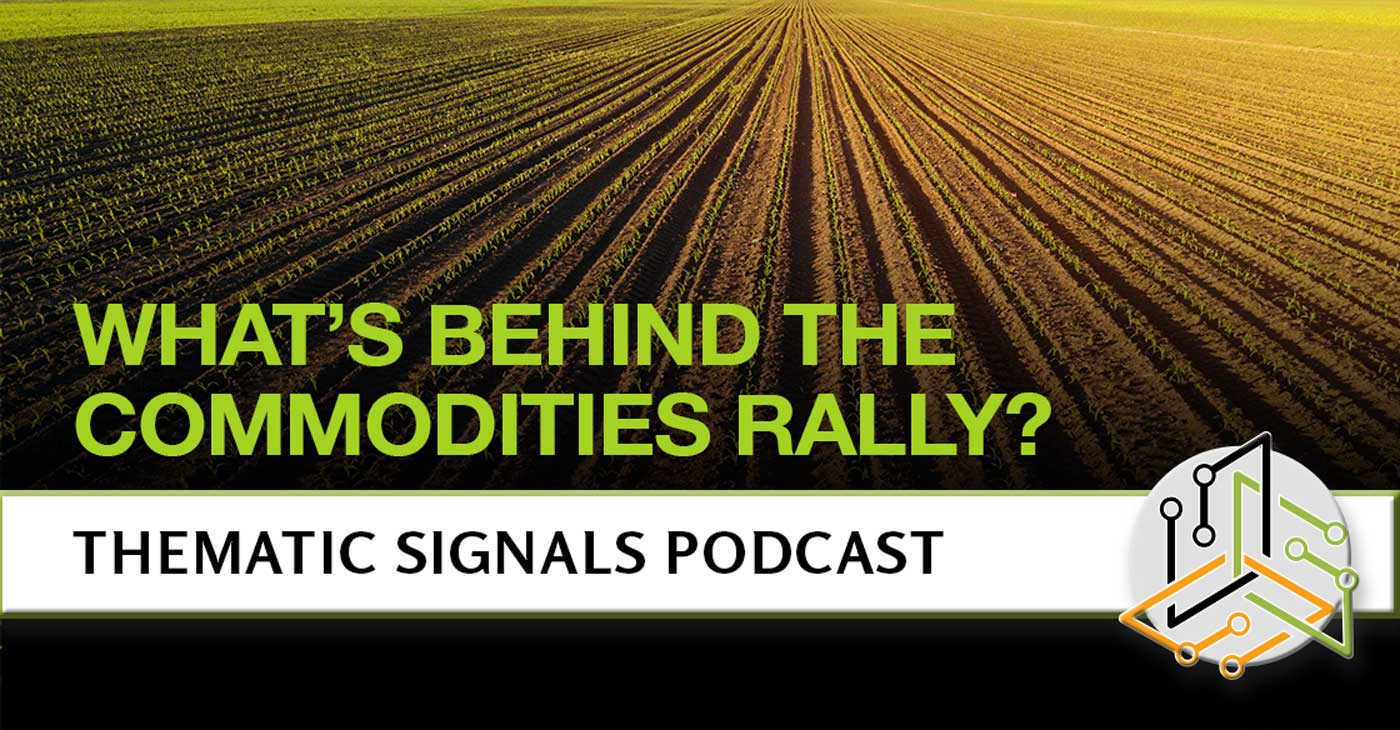 What's Behind the Commodities Rally?